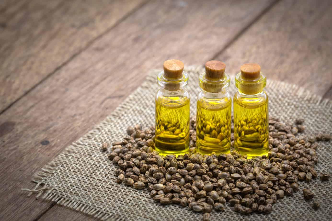 cbd hemp oil products cannabis oil against marijuana plant herbal treatment alternative medicine 163296017